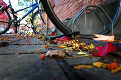 Bicycle in city in autumn Stock Photo