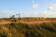 Bicycle on a coastal boardwalk Stock Photography