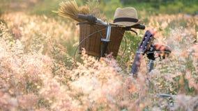 Bicycle com cesta e guitarra das flores no prado, Fotografia de Stock Royalty Free
