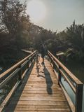 40 - Bicycle Cycling Men standing on wooden bridges royalty free stock images