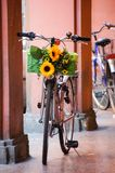 Bicycle decorated with sunflower in Bologna, Italy. Standing in a portico Royalty Free Stock Images