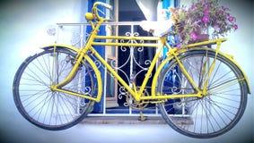 Bicycle window decoration royalty free stock photo