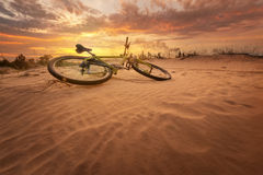 Bicycle in the desert Royalty Free Stock Photo
