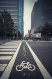 Bicycle a estrada imagem de stock