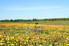 Bicycle on field Royalty Free Stock Photo