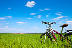 Bicycle on the field Royalty Free Stock Image