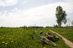 Bicycle in the field stock images