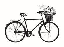 Bicycle with flower basket, white, isolated on white background stock illustration