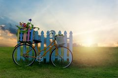 Bicycle with Flower Crate. And Beautiful sunset scene Stock Images