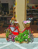 Bicycle and Flower Display outside shop in Malaga. Royalty Free Stock Photography