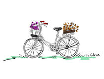 Bicycle with flower Stock Photos
