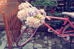 Bicycle in flower garden Royalty Free Stock Image