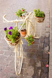 Bicycle Flower Plant. White Bicycle and Flower Plant Stock Photography
