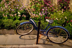 Bicycle Flower Show Royalty Free Stock Image