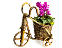 Bicycle flower vase Stock Images