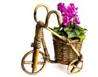 Bicycle flower vase. Photo of isolated bicycle flower vase Stock Images