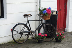 Bicycle with flowers Stock Photos