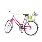 Bicycle with flowers. In a basket. Vector illustration Royalty Free Stock Images