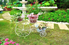 Bicycle with flowers. Bicycle in beautiful flowers cluster Stock Photos