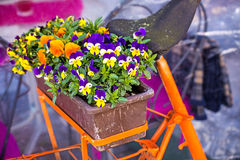 Bicycle with flowers Stock Photography