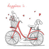 Bicycle with a flowers and dog Royalty Free Stock Photos