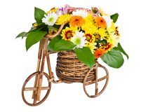 Bicycle With Flowers isolated on white background Royalty Free Stock Photo