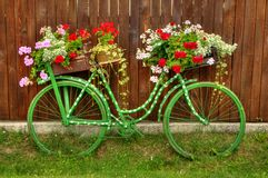 Vintage Bicycle with Flowers. A nice and old bicycle with flowers on the side of the street of a small village in Tuscany, Italy Royalty Free Stock Image