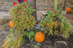 Bicycle with Flowers and Pumpkins Stock Images