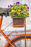 Bicycle with flowers Stock Photo