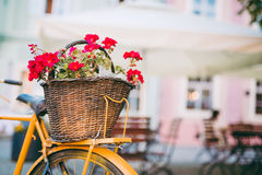Bicycle with flowers. Vintage old black bicycle with flowers in the back basket,parked in the square Royalty Free Stock Photography