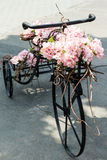 Bicycle with flowers Royalty Free Stock Photos