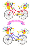 Bicycle with flowers. Stock Photos