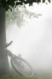 Bicycle in the fog. Bicycle and fog in a way of a natural reserve stock image