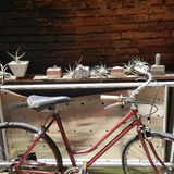 Ally bike stock photography