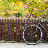 Bicycle and fence. Bicycle in front of a wooden fence and grapes Royalty Free Stock Images