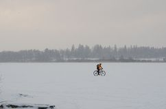Bicycle on a frozen lake Royalty Free Stock Photos
