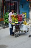 Bicycle Fruit Shop or greengrocery on the street at Thamel market Royalty Free Stock Image