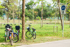 Bicycle in garden park on sunny. Bicycle in the garden park on sunny Royalty Free Stock Images