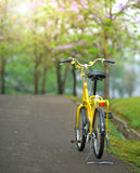 Bicycle in the garden Royalty Free Stock Photography