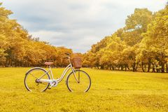 Bicycle on garden in summer made with color filters. Soft Focus stock photos