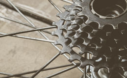 Bicycle gear cassette Royalty Free Stock Photography