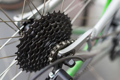 Bicycle gear detail Stock Image