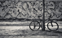 Bicycle on graffiti wall background in Black&White. Royalty Free Stock Images