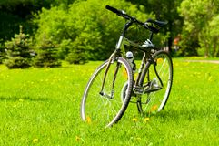 Bicycle on grass. At sunny summer park royalty free stock image