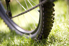 Bicycle in the grass Royalty Free Stock Photography