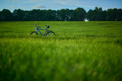 Bicycle on grass field in the morning. Blue modern bicycle on grass field in the morning at the sunrise Stock Image