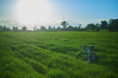 Bicycle on grass field in the morning. Blue modern bicycle on grass field in the morning at the sunrise Royalty Free Stock Photography