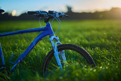 Bicycle on grass field in the morning. Blue modern bicycle on grass field in the morning at the sunrise Royalty Free Stock Image