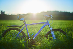 Bicycle on grass field in the morning. Blue modern bicycle on grass field in the morning at the sunrise Royalty Free Stock Images