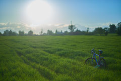 Bicycle on grass field in the morning. Blue modern bicycle on grass field in the morning at the sunrise Royalty Free Stock Photo